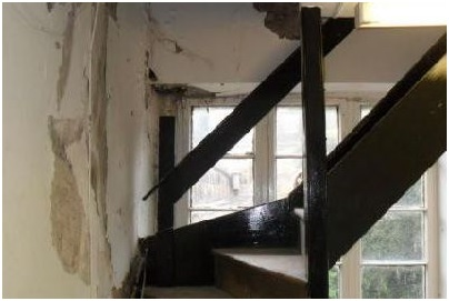 Image result for Dry rot and home buying: the essentials
