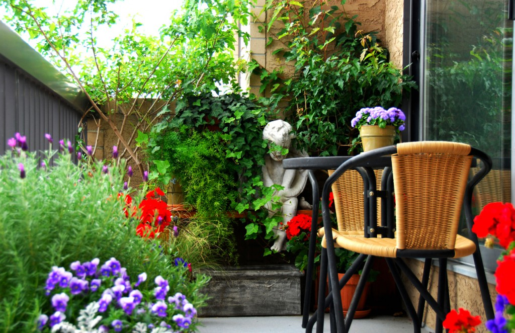 Small Balcony Garden – A Perfect Addition to Any Patio